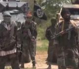 Boko Haram kills 50 women & children in Nigerian town, captures up to 500 – report